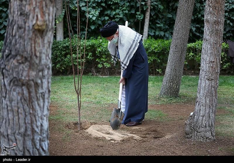 """""""تذکرات محیط زیستی رهبر انقلاب"""" باید در برنامه هفتم توسعه کشور لحاظ شود"""