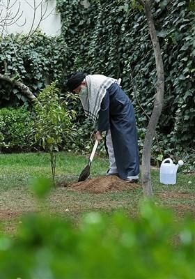 کاشت دو نهال میوه توسط مقام معظم رهبری