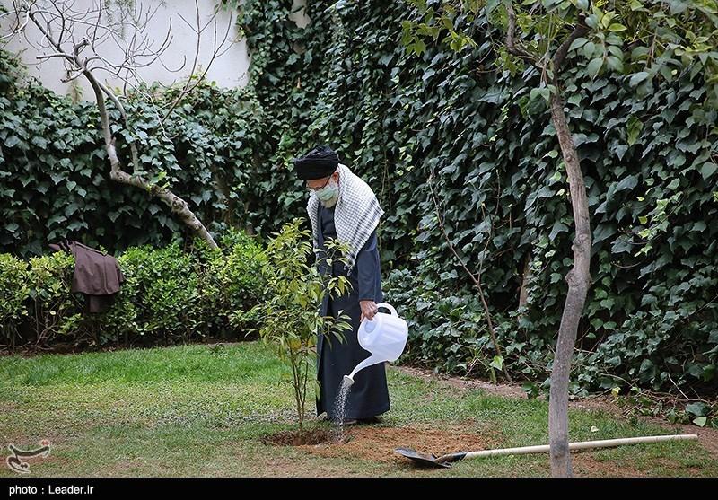 الامام الخامنئی یغرس شتلتین بمناسبة یوم الشجرة