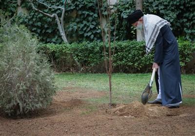 Ayatollah Khamenei Highlights Significance of Environmental Protection, People's Livelihood