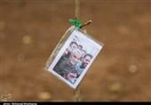 """پویش درختکاری """"مظهر حیات"""" در قزوین به روایت تصویر"""