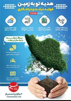اینفوگرافیک/ هدیه تو به زمین | فواید درخت و درختکاری