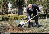 کاشت یک اصله نهال میوه توسط محمدباقر قالیباف رئیس مجلس شورای اسلامی
