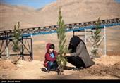 کاشت نهال بمناسبت هفته در ختکاری - کرمانشاه