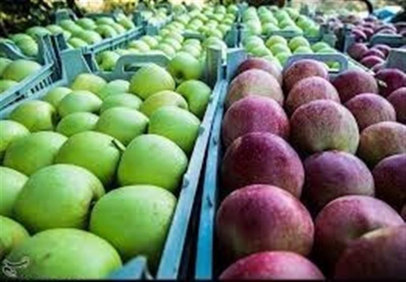 وزارت جهاد کشاورزی با واردات سیب و پرتقال توسط وزارت صنعت مخالفت کرد+ سند