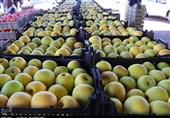 تولید سیب پاییزه استان اصفهان به 215هزار تن میرسد