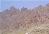 حقوق وسوسهکننده 4 هزار دلاری برای شرکت در جنگ یمن