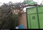 طوفان دسترنج کشاورزان استان خراسان جنوبی را با خاک یکسان کرد