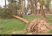 ثبت بیشترین حادثه در روز 5 اسفند بهدلیل تندباد و بارش شدید باران