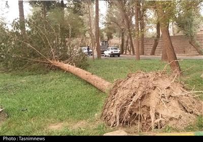 خسارت سامانه مونسون به نیکشهر/ برق برخی روستاها قطع شد/ خسارت به ۱۰ منزل مسکونی