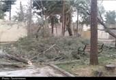 هواشناسی ایران 1400/06/06| هشدار وزش باد خیلی شدید در برخی استانها