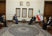 دیدار نماینده ویژه نخست وزیر پاکستان در امور افغانستان با ظریف