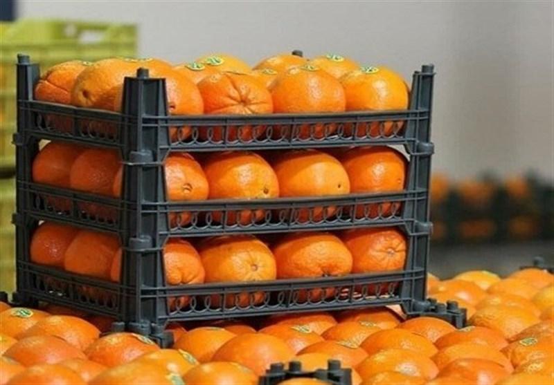 وزارت صنعت: میوه های دپو شده برای دلالان بوده است