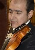 همه تارهای یک حنجرهایم / نگاهی به دلایل کم شدن نوازندگان ویولن ایرانی
