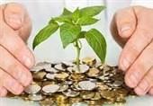 روایت سرمایهگذار چابهاری از تودرتوی مشکلات سرمایهگذاری