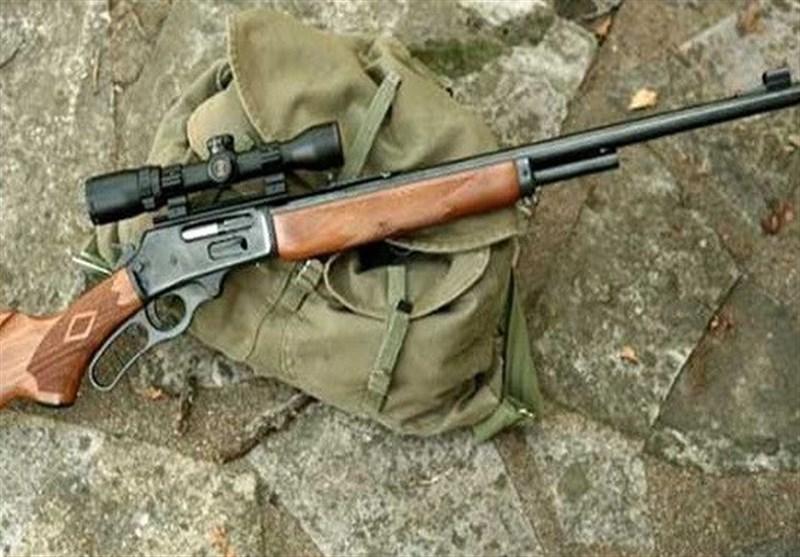 رفیعی: اصلاح قانون حمل سلاح در دستورکار مجلس قرار گرفت