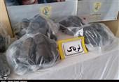 550 کیلوگرم مواد مخدر در کهگیلویه و بویراحمد کشف شد