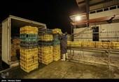 احتکار مرغ توسط 3 هزار و 460 مرغداری در کشور