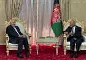 Afghan President Hails Iran's Stances