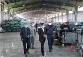 28 واحد تولیدی راکد در شهرستان اردبیل احیا و فعال شد