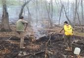 آتشسوزی در منطقه حفاظت شده لوه پارک ملی گلستان مهار شد
