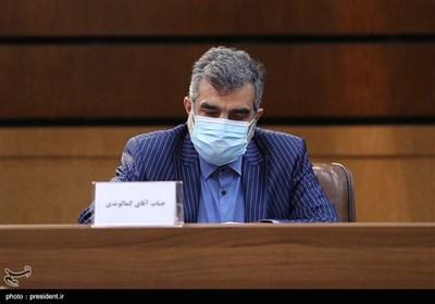 بهروز کمالوندی سخنگوی سازمان انرژی اتمی در مراسم رونمایی از ۱۳۳ دستاورد هستهای با دستور رئیس جمهور