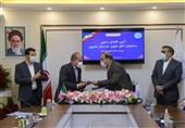 تعاونی مدیریت محصولات استراتژیک خراسان جنوبی تأسیس میشود