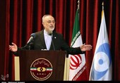 Iran to Fix Natanz Site Damages Better than Before: Nuclear Chief
