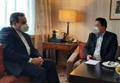 دیدار رئیس هیئت چینی با عراقچی در وین