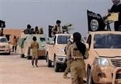 هشدار سازمان اطلاعات آلمان درباره خطرات تروریسم داعش و القاعده