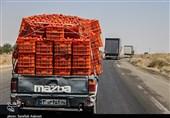 پایانه صادرات محصولات کشاورزی شمال غرب در برزخ اجرا؛ کلنگی که 11 سال بر زمین ماند