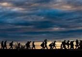 افزایش پدیده مهاجرت و فرار مغزها در ترکیه