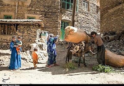 """روایت تسنیم از محرومیت منطقه """"شوارز"""" در لردگان/ اینجا نه آب هست، نه جاده، نه اینترنت، نه مدرسه"""