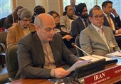 Iran's Envoy Reelected Vice-Chair of OPCW Executive Council