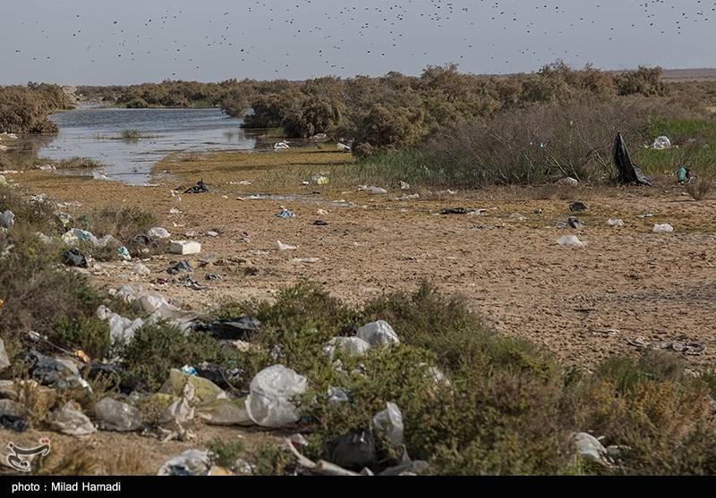 تالاب بینالمللی شادگان با بیش از ۵۰۰ هزار هکتار در جنوب خوزستان، به تنهایی بیش از یک سوم مساحت تالابهای ثبت شده کشوراست