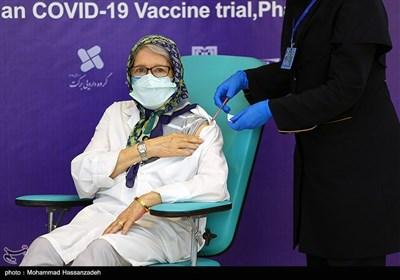 تزریق واکسن کووایران برکت به دکتر مینو محرز