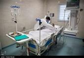 جدیدترین اخبار کرونا در ایران| بیماریابی فعال پاشنه آشیل شکست ویروس منحوس/ فوت ماهانه 4881 نفر /کاهش شهرستانهای قرمز/ هر 4 دقیقه یک مورد فوتی+ نقشه و نمودار