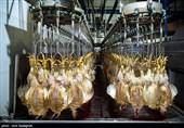 بزرگترین کشتارگاه صنعتی منطقه در ارومیه برای 350 نفر اشتغالزایی میکند