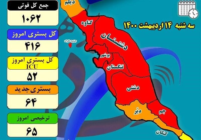 شیب ابتلا به بیماری کرونا در استان بوشهر کاهشی شد