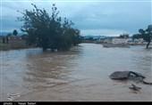 علت اصلی شکستهشدن بندهای خاکی در سیلاب گناباد چه بود؟ + فیلم