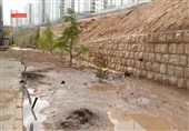 روایت بارش باران زیبای بهاری که کام مردم پردیس را تلخ کرد + فیلم