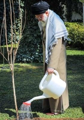 «معجزه آبخیزداری» نهی مقام معظم رهبری از غرس درختان مضر/ درختان غیرمثمر چگونه باعث وقوع سیل می شوند؟