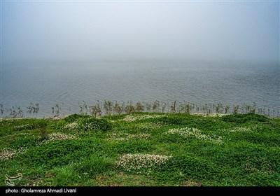 فاصلهٔ تقریبی این دریاچه از شهر ساری ۷۰ کیلومتر و در مسیر جادهٔ ساری - سمنان میباشد که در بلندای ۱۳۰۰ متری ازتراز دریا قرار دارد.