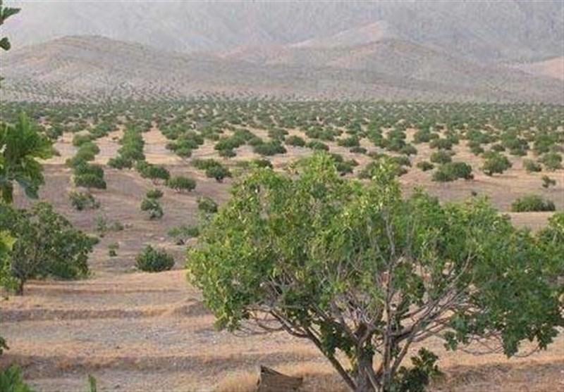 «معجزه آبخیزداری»|تبدیل تهدید سیل به فرصت آبادانی با استفاده از گورابها/ در کدام شهر ایران سیل جاری نمیشود؟