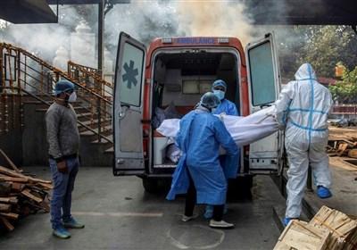 بیش از ۴ هزار کشته کرونایی در هند/ درخواست عجیب دهلی از رسانههای اجتماعی
