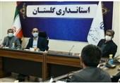 استاندار گلستان: همه دستگاهها برای مانعزدایی از تولید بسیج شوند