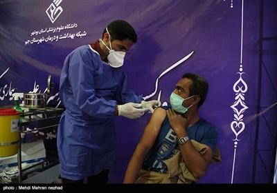 واکسیناسیون سراسری در شهرستان جم - بوشهرتصویر