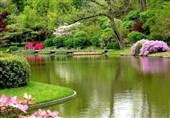 «معجزه آبخیزداری» |پارک آبخیز؛ پل ارتباطی شهر با طبیعت