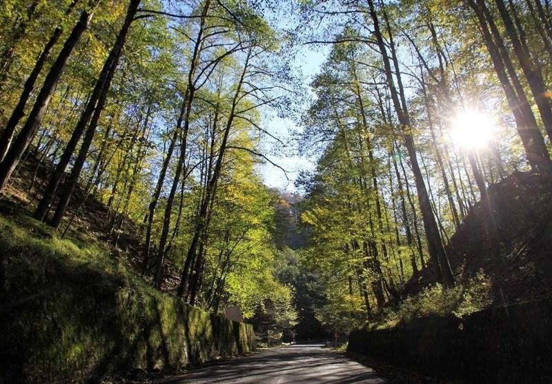 آبشار سوته راش استوار در دل جنگل