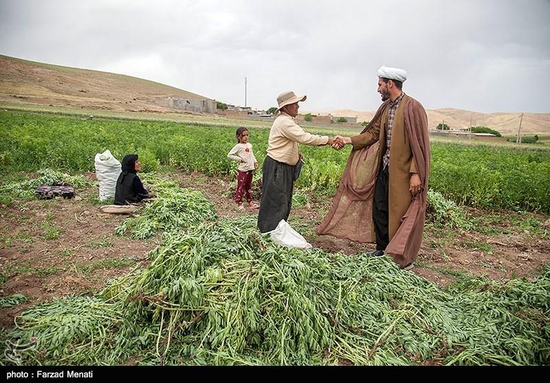 سود، جریمه و کارمزد وام کشاورزان خسارتدیده بخشیده شد / بانکها جریمههای دیرکرد را برگردانند